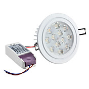Dimmable 12W 1080LM 3000-3500K Warm White Light LED Ceiling Bulb (220-240V)