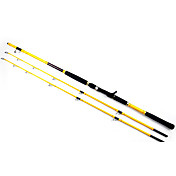 195/210cm Two Tips Casting Fishing Rod (50#/80# Sections)