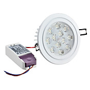 Dimmable 12W 1080LM 6000-6500K Branco Natural Lâmpada de teto LED (220-240V)