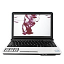 "Free shipping - Hot Eee PC with 10.2""TFT / Intel Atom 1.6GHz CPU/1GB RAM/160G HDD Eee PC Laptop"