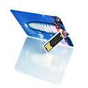 Credit Card Style USB Flash Drive (1GB To 16GB)