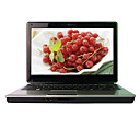 Hasee Laptop-14,0 &amp;quot;Breitformat-LED Backlight-Intel Pentium Dual-Core-(Penryn) T4300 (2,1 GHz)-1GB DDR2-250g-X4500HD-1.3m Kamera-wifi-Combo (smq38