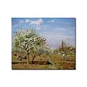 Stretched Handmade Orchard in Blossom,Louveciennes Painting by Camille Pissarro (0192-YCF103932)