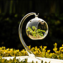 Hanging Ball Clear Glass Vase Centerpiece