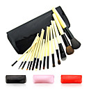 Fashion Professional Makeup Brush With Free Case(15 Pcs)