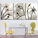 Stretched Canvas Print Botanical Dried Floral Set of 3 1301-0228